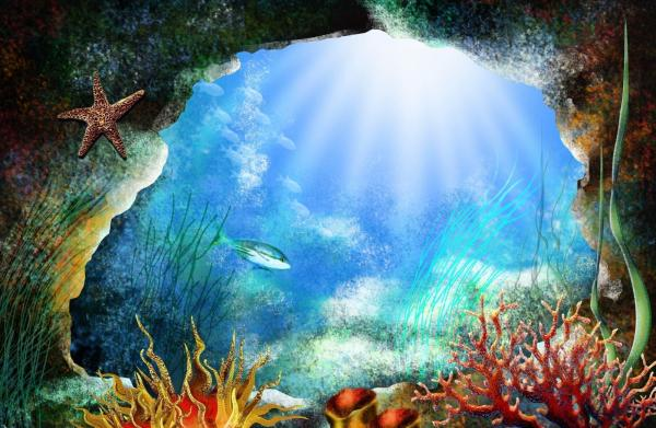 Ocean Sea Life Wallpapers for Desktop