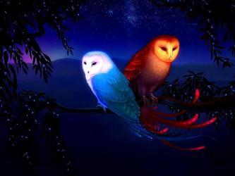 wallpapers vanossgaming owl hd backgrounds