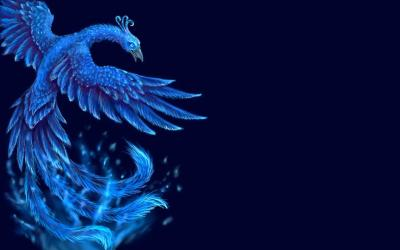 Dragons And Phoenix Rising From Ashes Wallpapers Wallpaper Cave