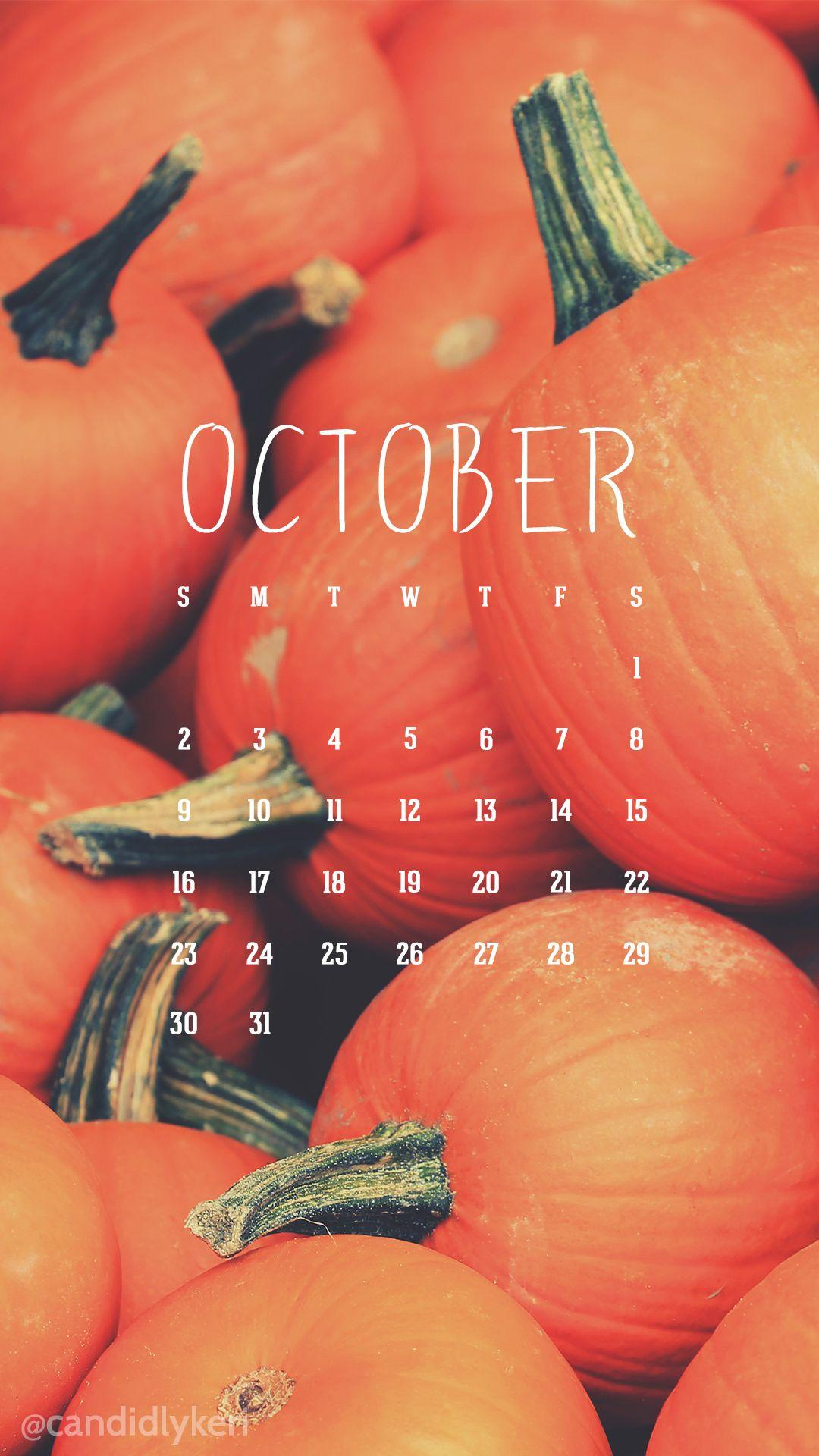 Fall Themed Iphone 6 Wallpaper Pumpkin Patch Wallpapers Wallpaper Cave