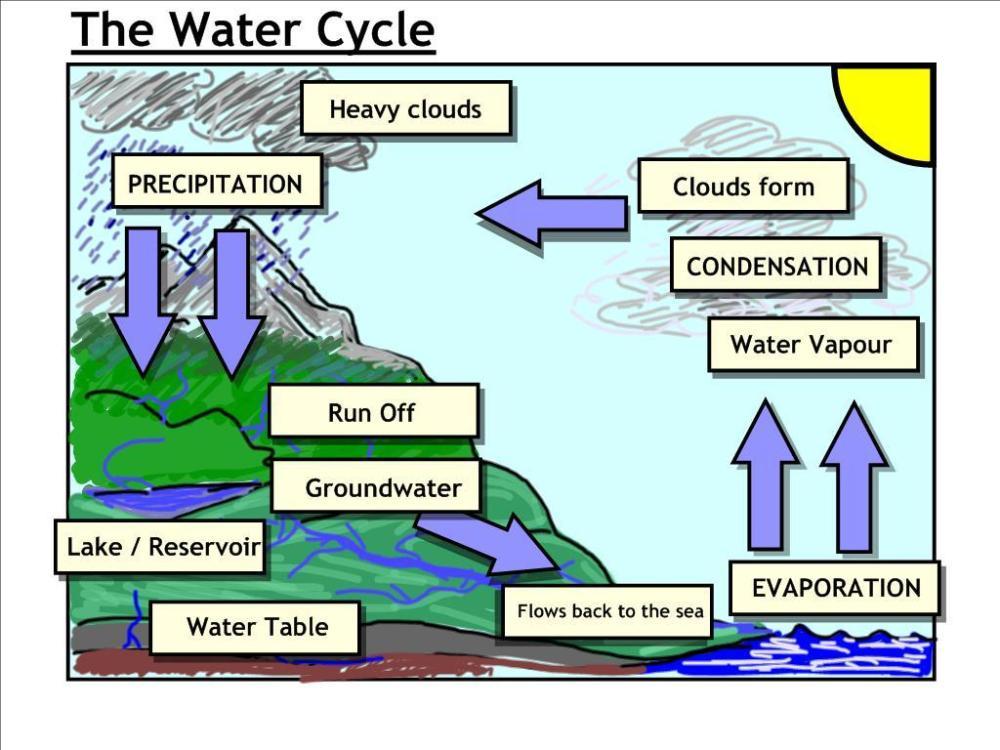 medium resolution of acid rain cycle diagram medical store management system
