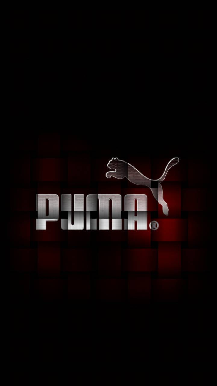 puma wallpapers for android phone | joshview.co