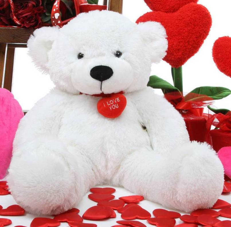 Red Colour Teddy Bear Hd Wallpaper Wallpapersimages Org