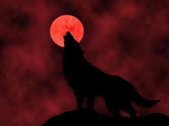 moon blood wolf wallpapers howling cool hd wolves desktop deviantart eclipse phone alpha imvu four lunar coming total wallpapercave nasa