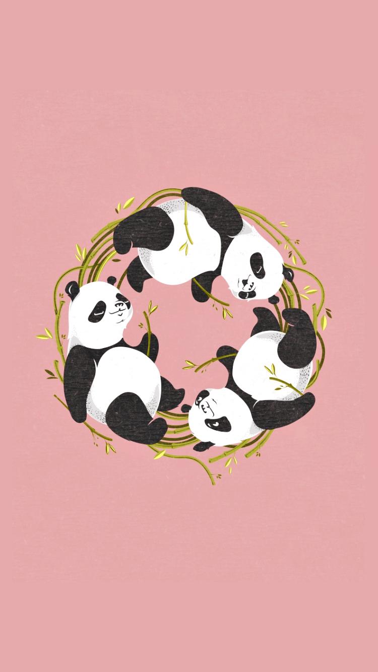 Cute Pandas Wallpapers Panda Tumblr Backgrounds Wallpaper Cave