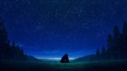 Anime Night Wallpapers Wallpaper Cave