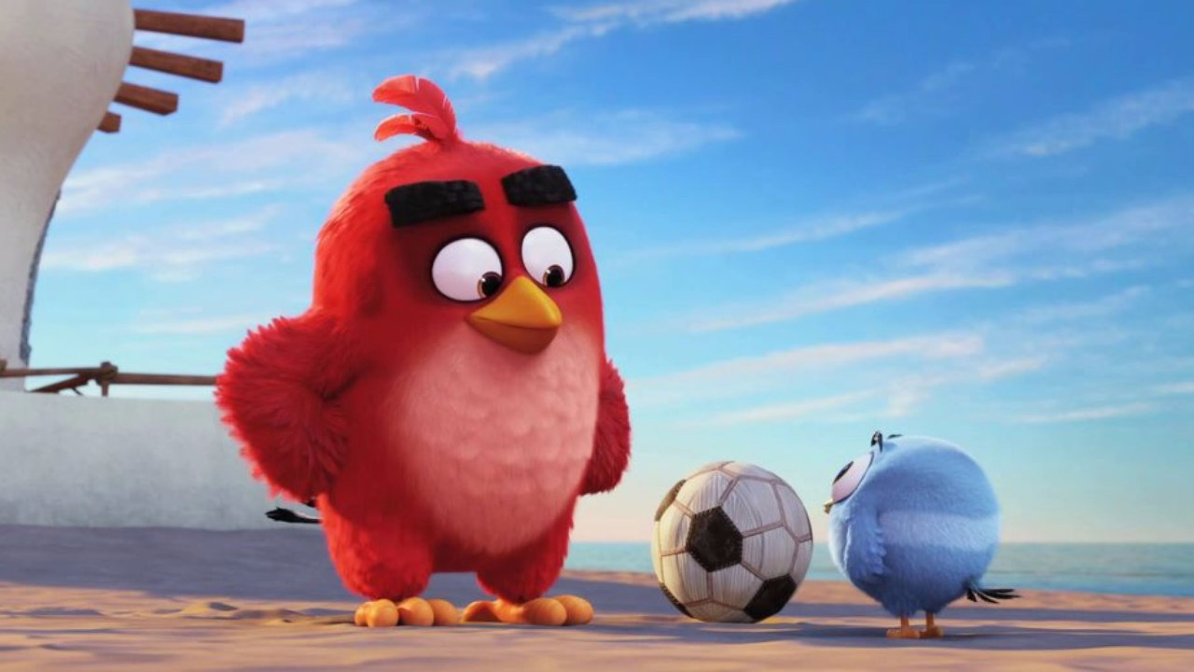 angry birds movie wallpapers