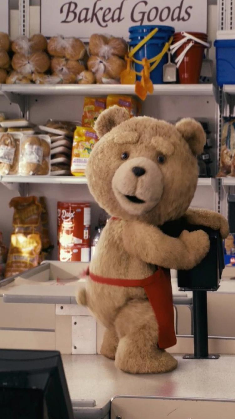 Ted Funny Pictures : funny, pictures, Wallpapers, Wallpaper