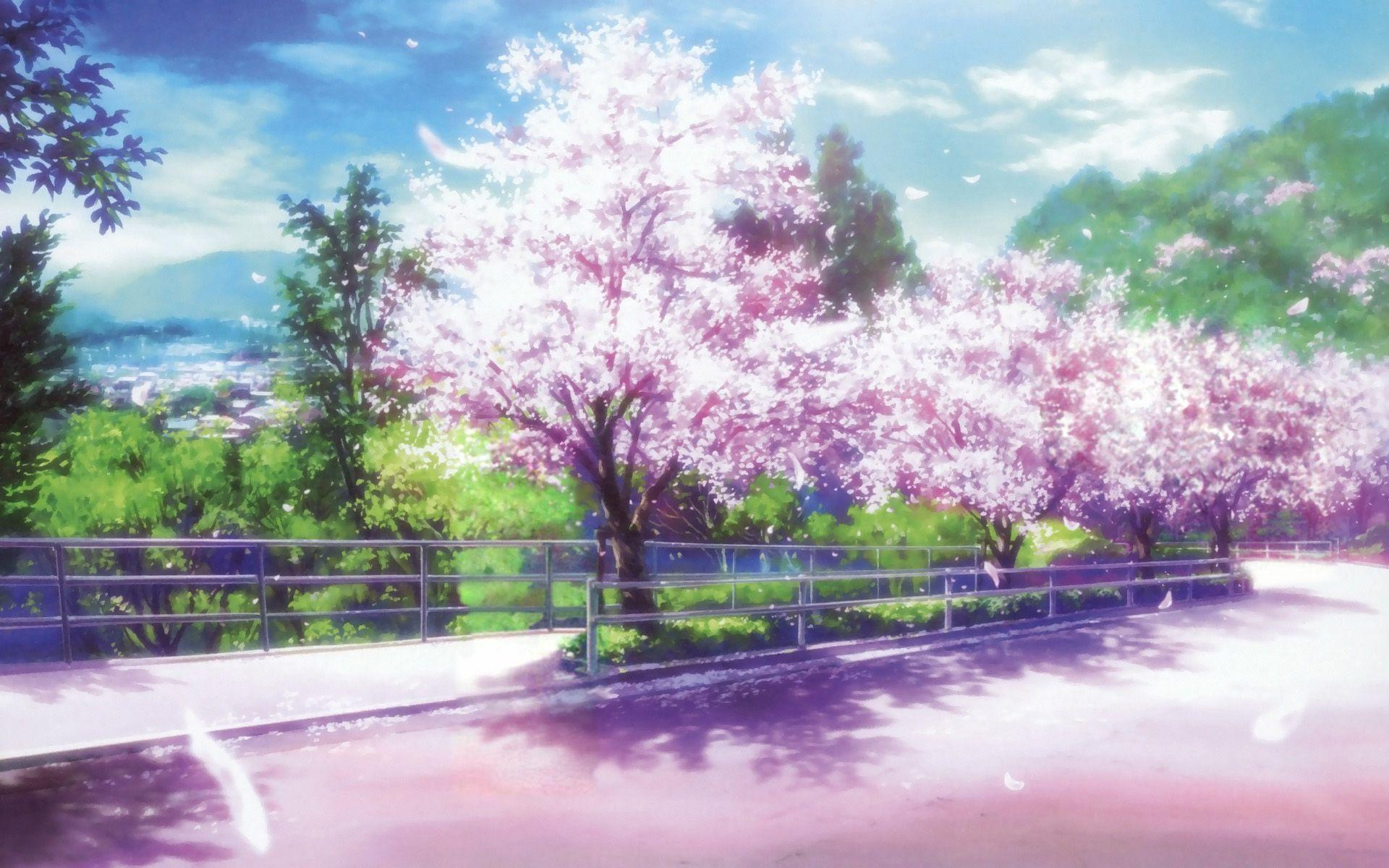Movies these days are a lot flashier than they are substantial. Anime Sakura Trees HD Wallpapers - Wallpaper Cave