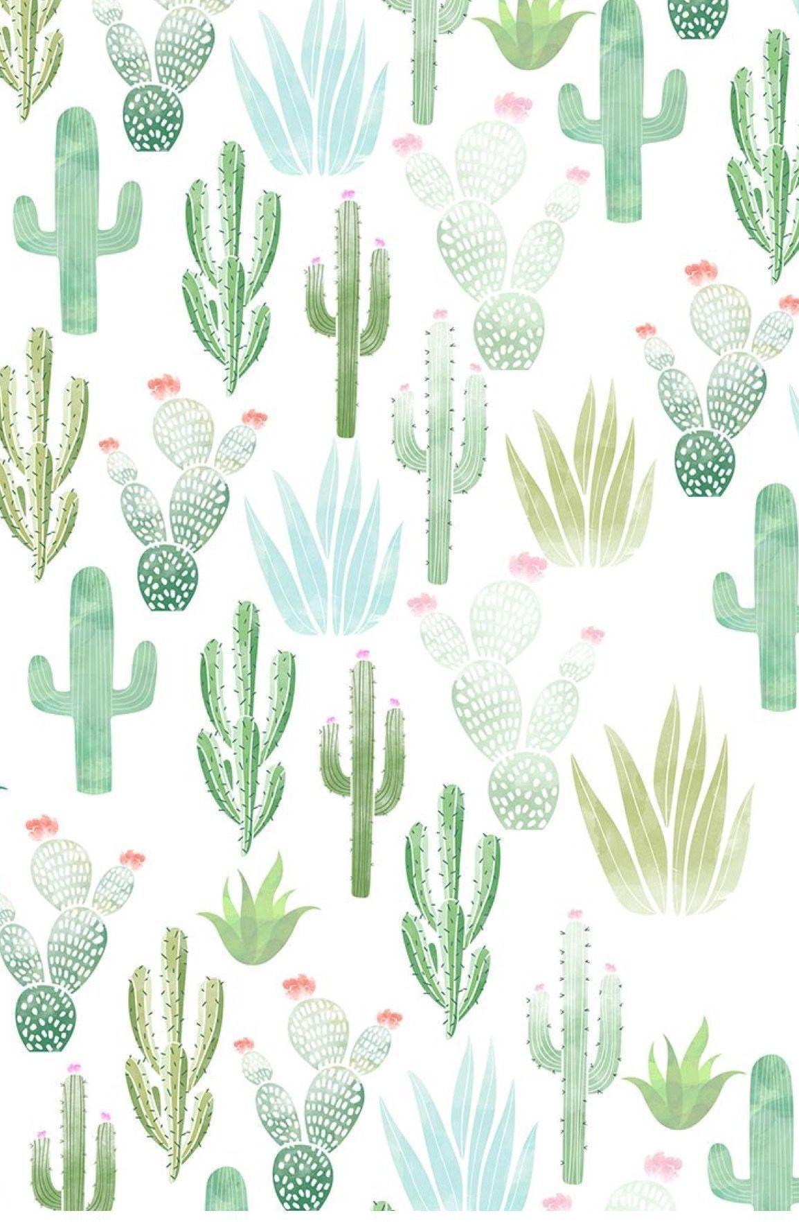 Aesthetic Cactus Desktop Wallpaper: cactus aesthetic, Aesthetic...