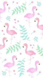 pink unicorn cute wallpapers flamingo backgrounds background google watermelon luxury