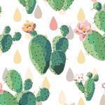 Wallpaper Aesthetic Cactus Novocom Top