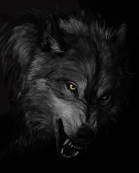 Dark Wolves Wallpapers Wallpaper Cave