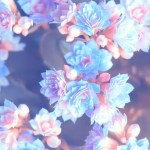 Aesthetic Flowers Wallpapers Wallpaper Cave