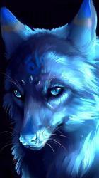 Galaxy Cute Animated Wolf