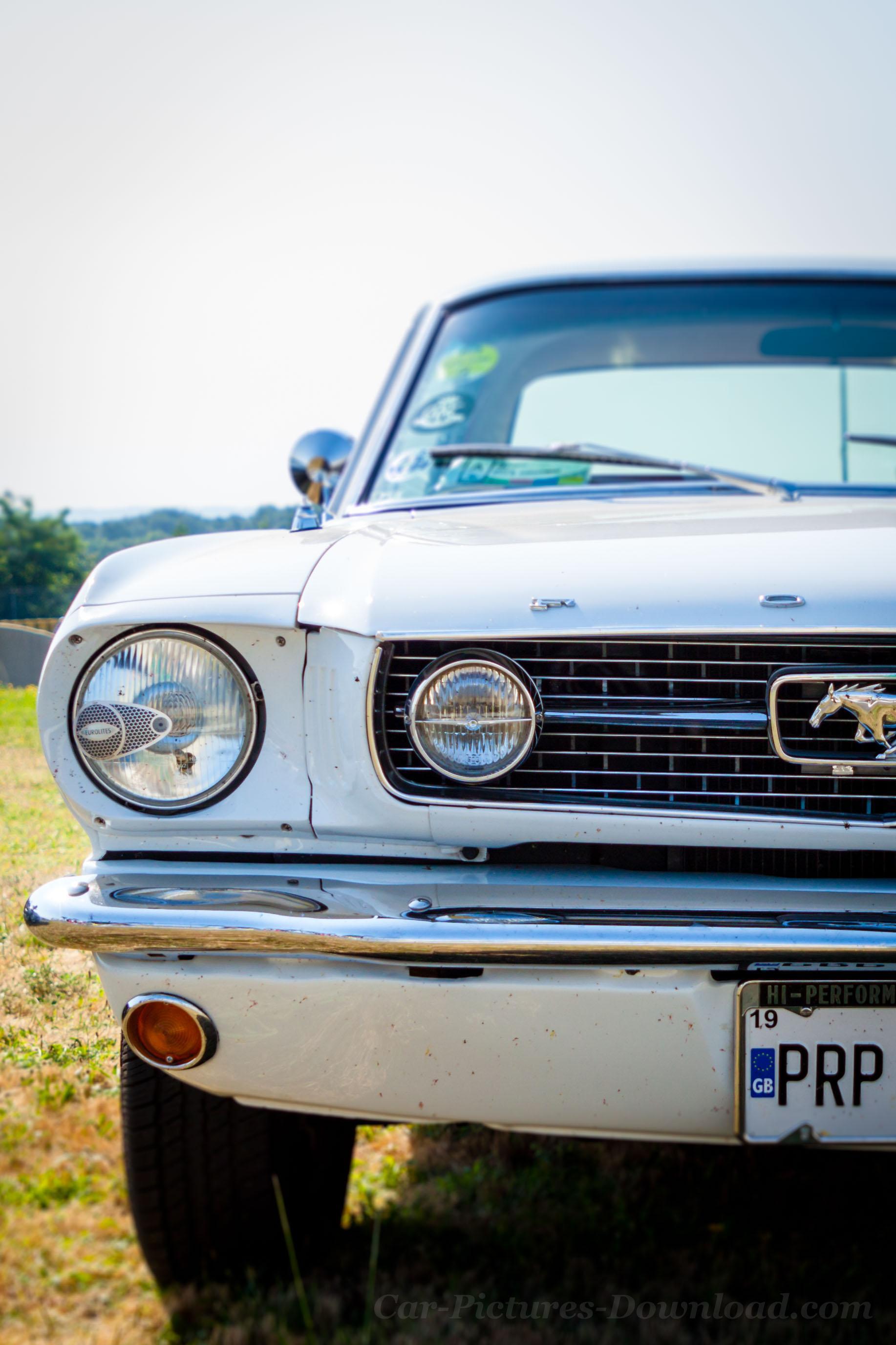 Classic Mustang Wallpaper : classic, mustang, wallpaper, Classic, Mustang, Wallpapers, Wallpaper