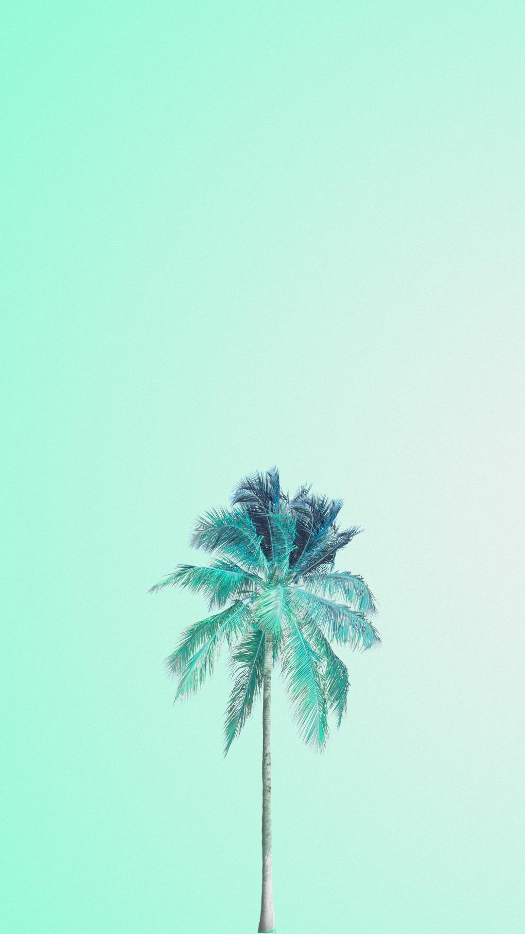 Cmyk Hijau Tosca : hijau, tosca, Background, Warna, Hijau, Tosca, Gambar
