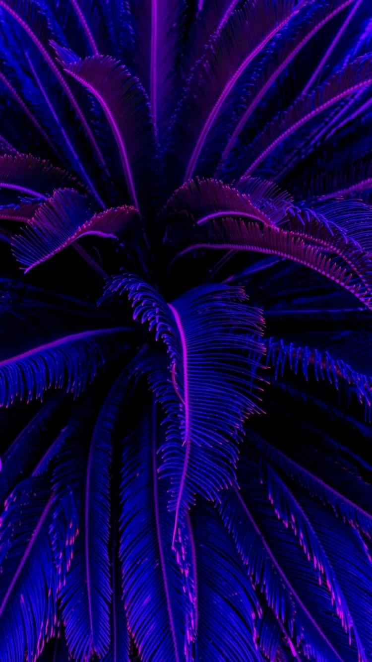 Purple Wallpaper Aesthetic Neon : Neon ...