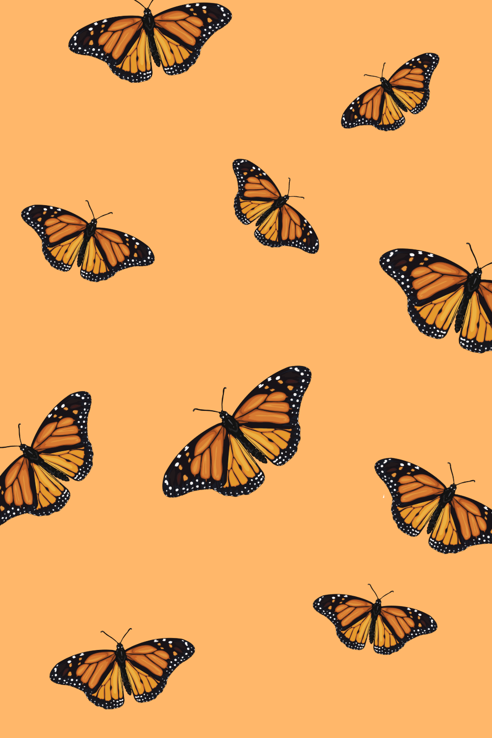 Butterfly Wallpapers, Butterfly Backgrounds... - Desktop Nexus