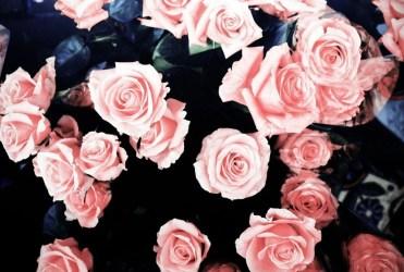 Grunge Pink Aesthetic Motion Design Image result for aesthetic laptop wallpaper. grunge pink aesthetic motion design