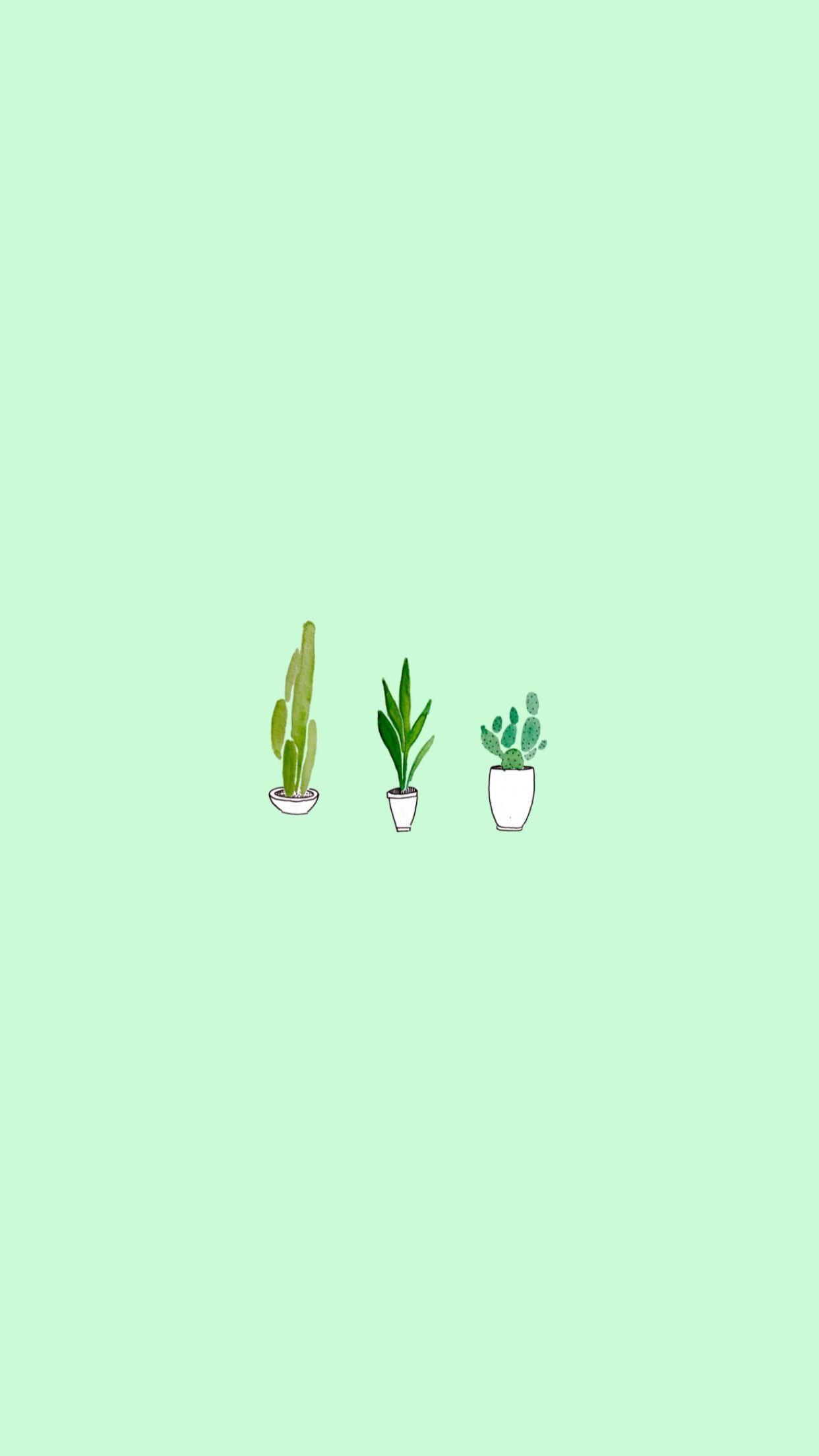 Light Green Aesthetic : light, green, aesthetic, Green, Aesthetic, Wallpapers, Wallpaper