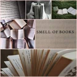 Book Aesthetic Wallpapers Wallpaper Cave