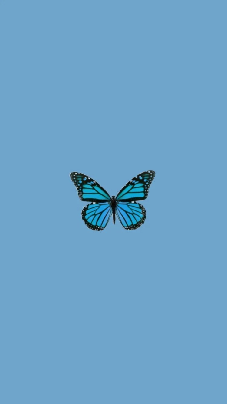 Your blue butterfly aesthetic quotes images are be had in this website. Blue Aesthetic Butterfly Wallpapers - Wallpaper Cave
