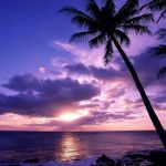 Purple Beach Sunset Wallpapers Wallpaper Cave