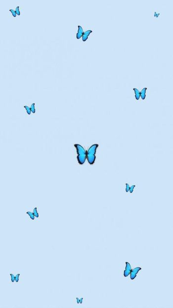 Blue Aesthetic Wallpaper Butterfly