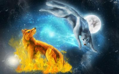 Wolf Moon Wallpapers Wallpaper Cave
