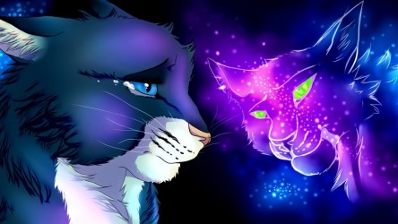 fantasy cats anime animated wallpapers hd wallpaperfx favourites