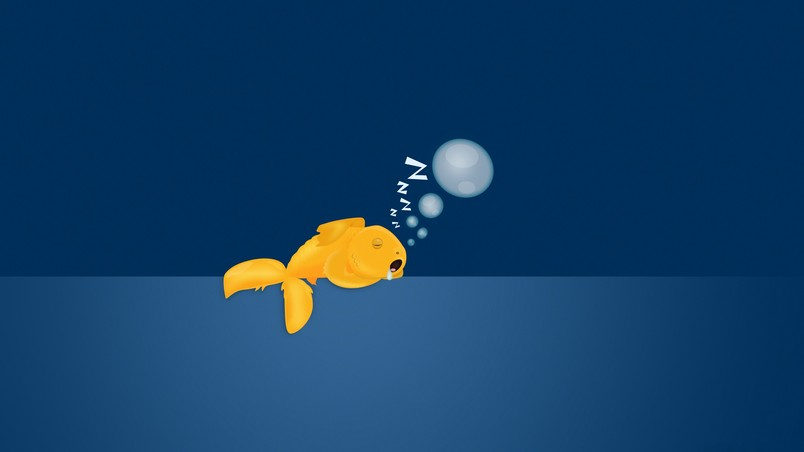 Cute Cartoon Bird Wallpapers Sad Gold Fish Hd Wallpaper Wallpaperfx