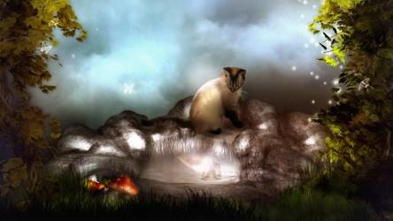 fantasy cat desktop hd wallpapers 3d animal dreams homepage downloads