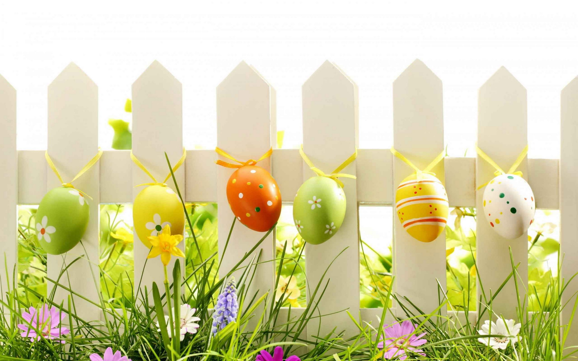 Cute Cartoon Easter Wallpaper Easter Day Wallpapers