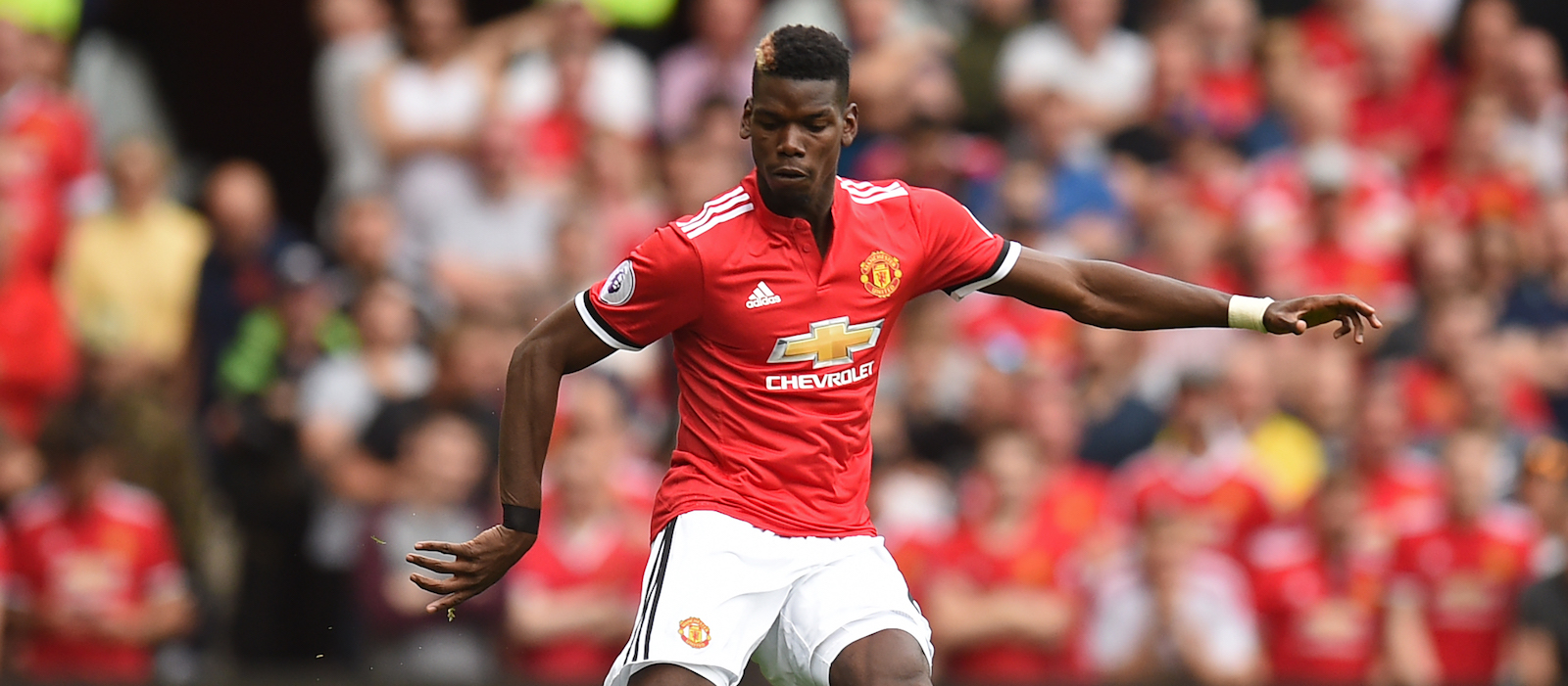 Manchester United Animated Wallpapers Paul Pogba Wallpaper Hd