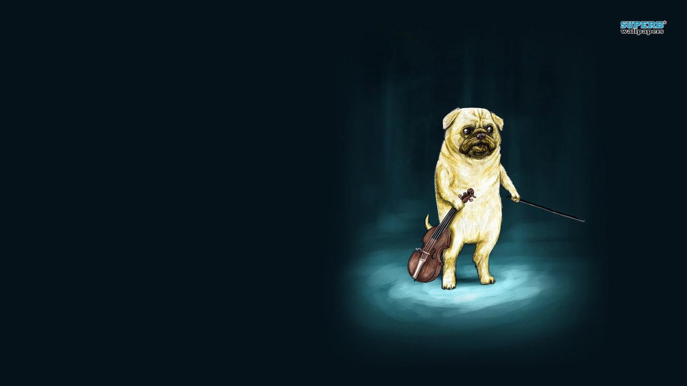 Funny Background Dog