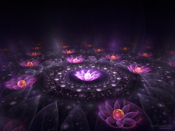 HD Abstract Neon Lotus Flower