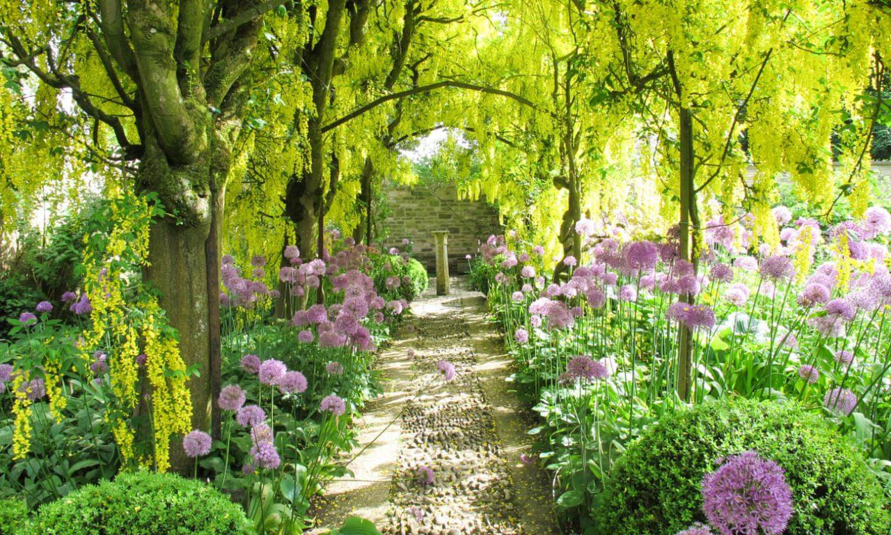 Beautiful Garden Background Beautiful Desktop Garden Lovely Wallpaper Nature 6427