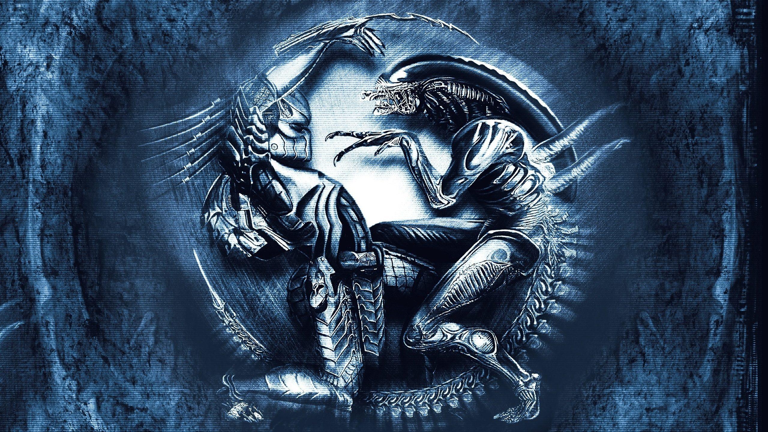 Cute Anime Alien Wallpapers Xenomorph Vs Predator Hd Wallpaper