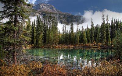 Tlcharger fonds dcran Le Parc National de Banff lac montagne sapin fort Alberta