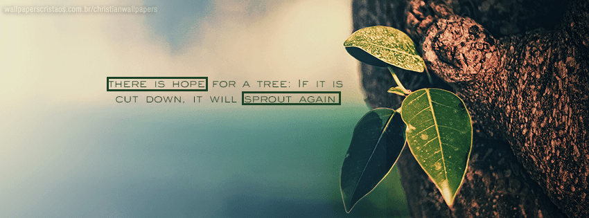 Christian Quotes Desktop Wallpaper There Is Hope Christian Wallpapers