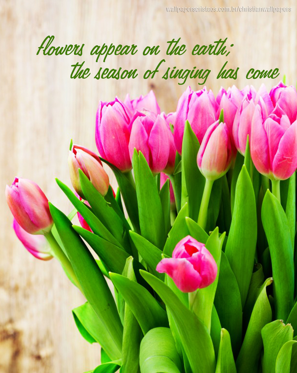 Easter Quotes And Sayings Wallpapers Flowers Christian Wallpapers