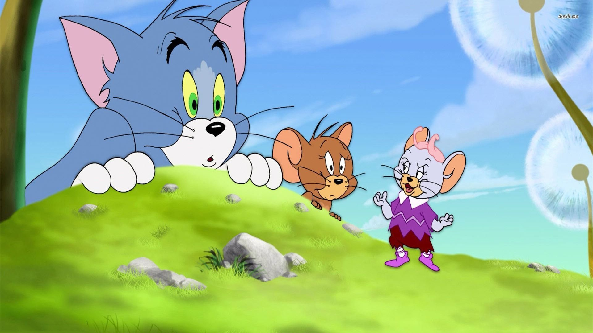 Tom Amp Jerry HD Wallpapers