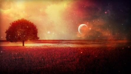 moon hd artwork fantasy concept wallpapers field blood wolf howling sky backgrounds desktop stokes anne pixelstalk mobile