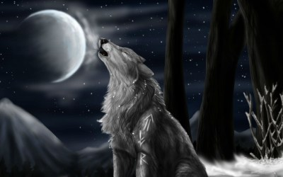 howling wolf anime moon wolves hd wallpapertag