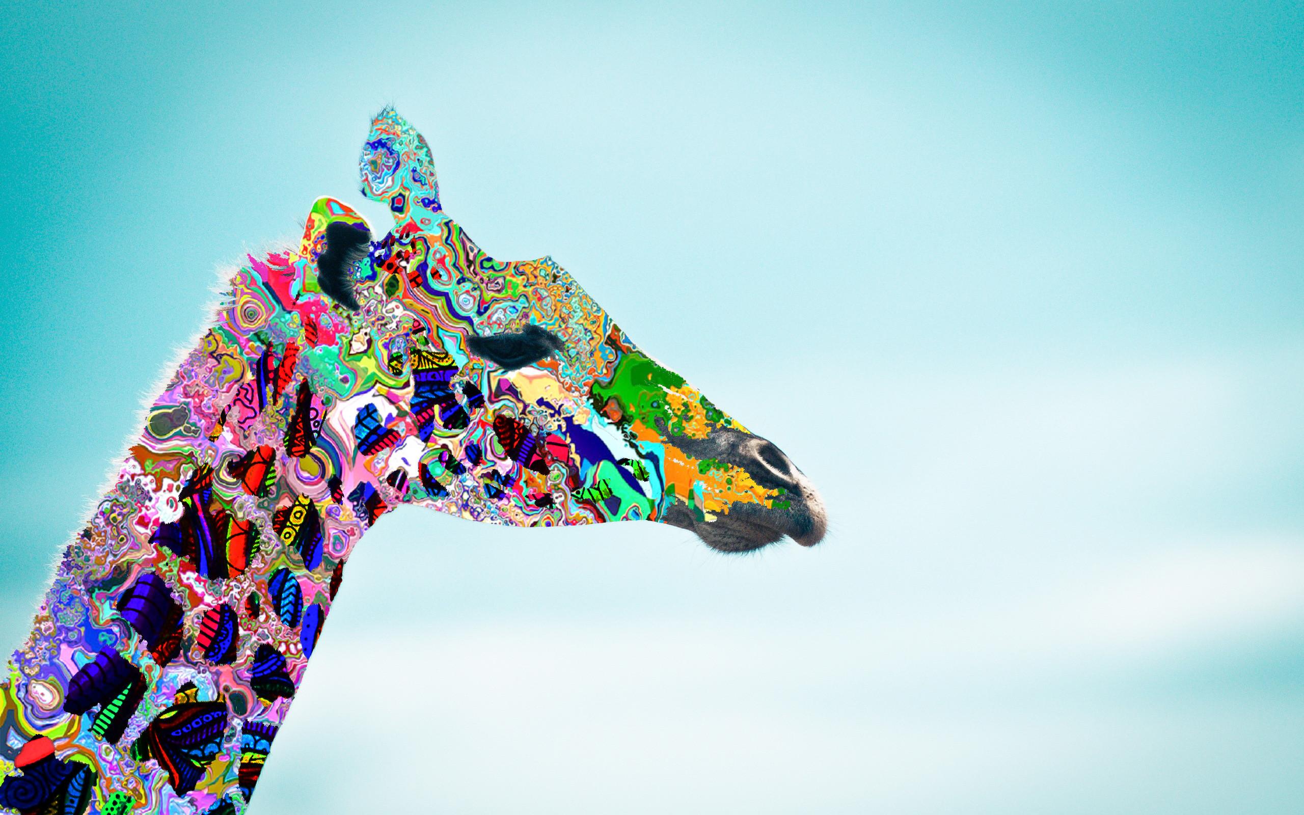 13 Inch Laptop Cute Wallpaper Giraffe Desktop Background 75 Pictures