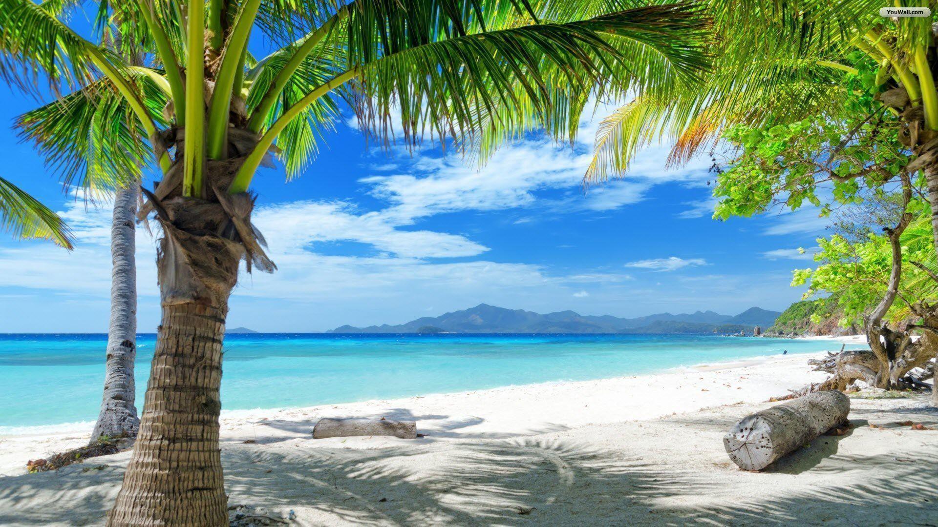 paradise beach wallpaper 69