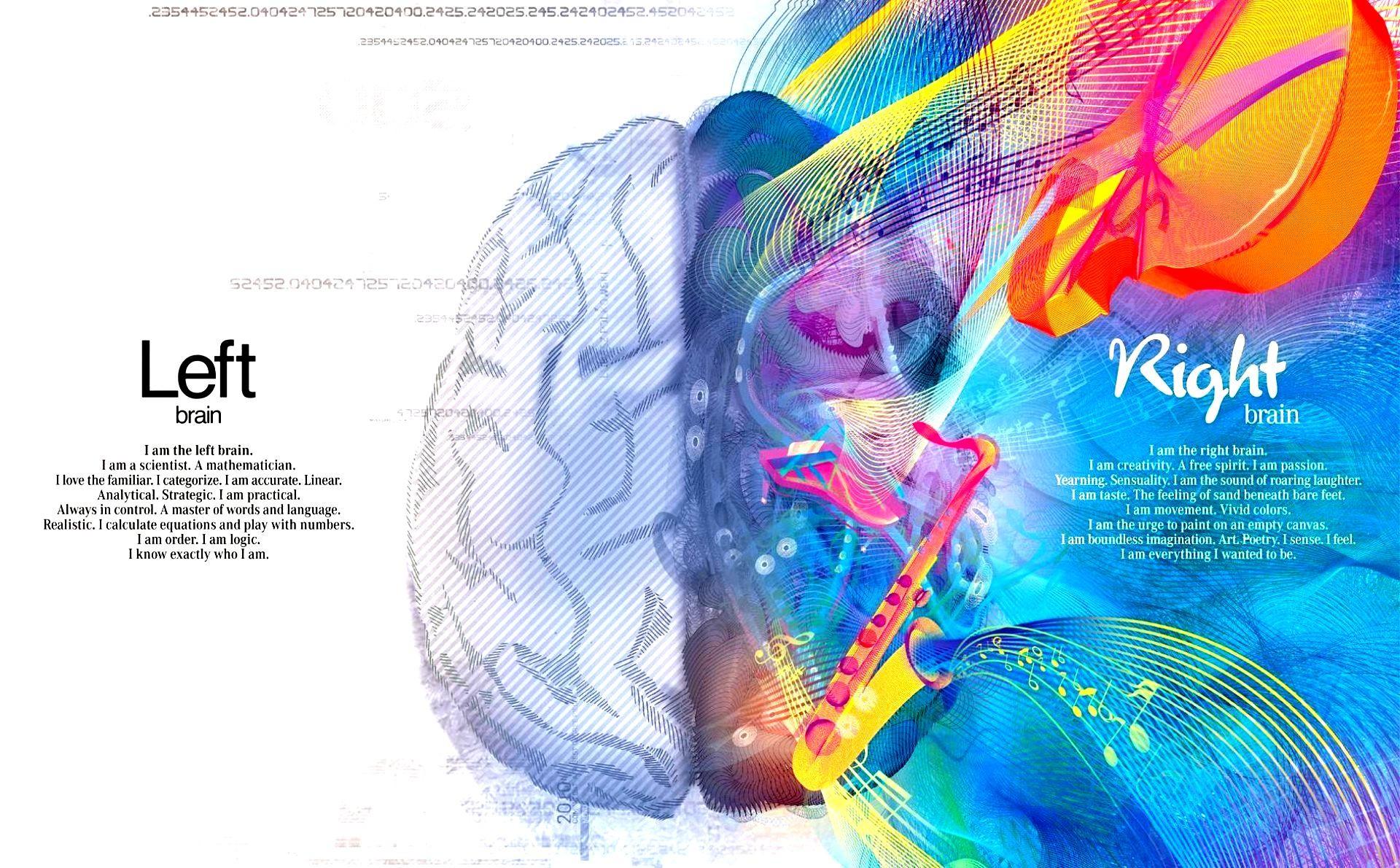 Left Brain Right Brain Wallpaper 59 Pictures