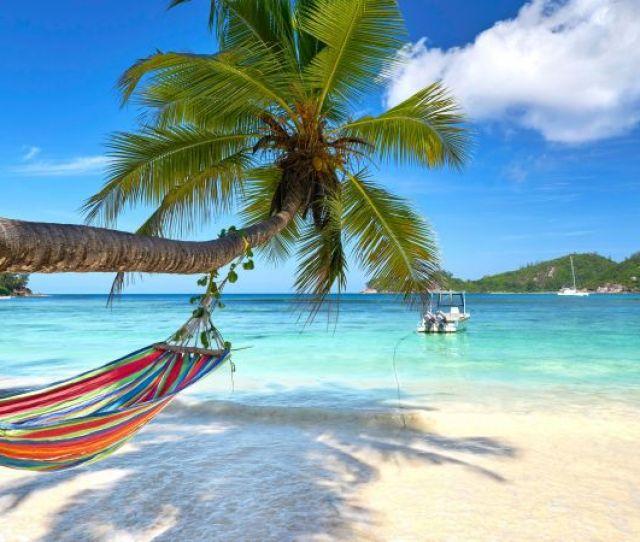 Turquoise Beach Palm K Horizontal