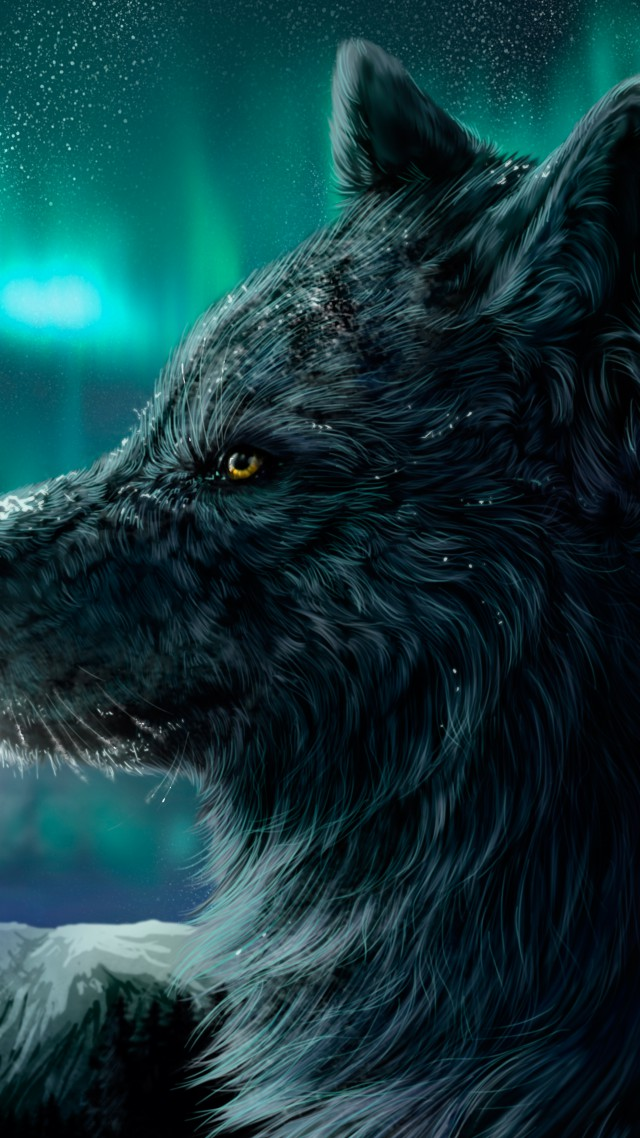 Girl Drawing Wallpaper Hd Wallpaper Wolf Aurora Polaris Look Art 4787